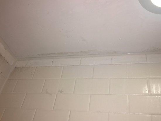 New Carrollton, MD: Black Marks on Shower Tile