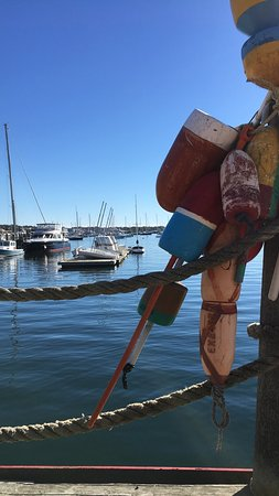 The Newport Lobster Shack Foto