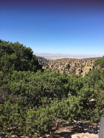 Willcox, Arizona: photo2.jpg