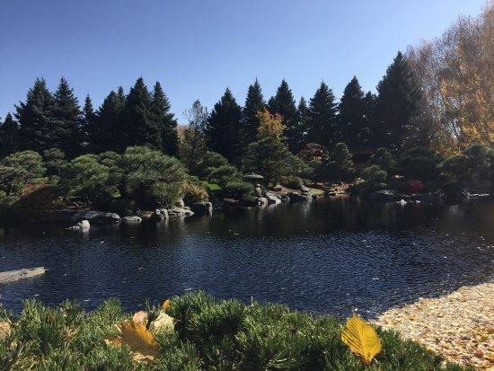 Denver Botanic Gardens: photo0.jpg