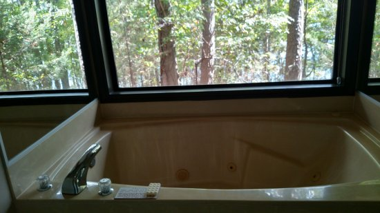 Fairfield Bay, AR: Jacuzzi Room View