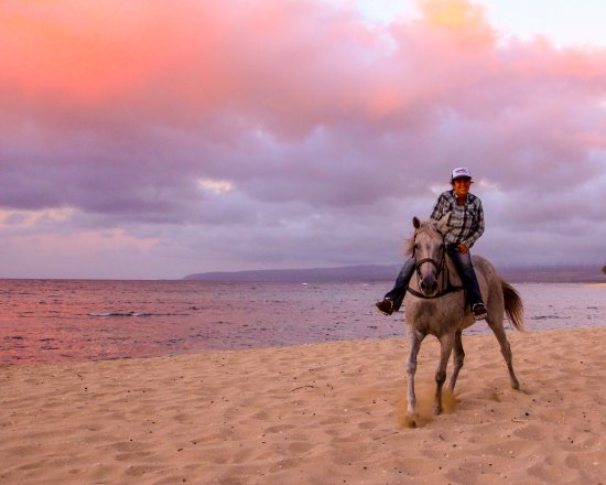 Waialua, Hawaje: Sarah on recent mother Clancy at sunset