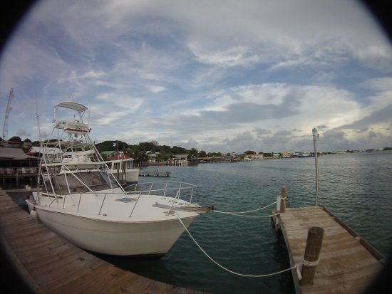 Bay Islands College of Diving: beautiful boats
