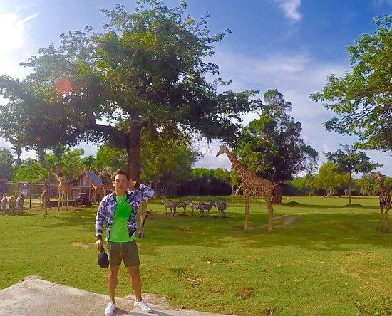 Busuanga Island, Filippinerna: photo3.jpg
