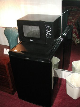 Comfort Inn Shady Grove: Freezer and microwave