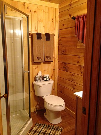 Cabins At Hickory Ridge: very, very clean! The entire place is!