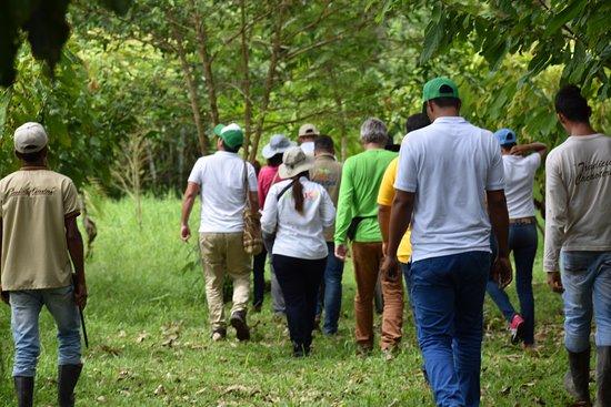 Arauquita, Colombia: RUTA EXPERIENCIAL DEL CACAO