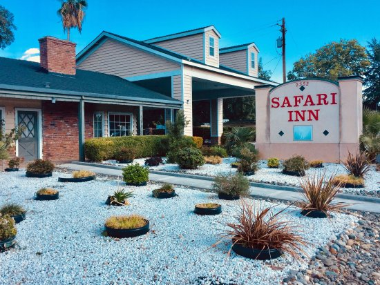 Safari Inn Front exterior