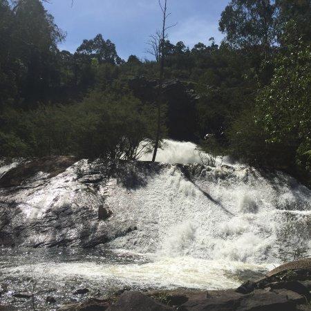 Healesville foto