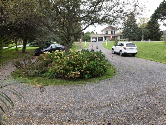 Breeze off the Lake B&B: Ample Parking