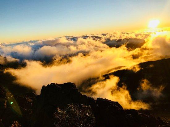 Kula, هاواي: photo2.jpg