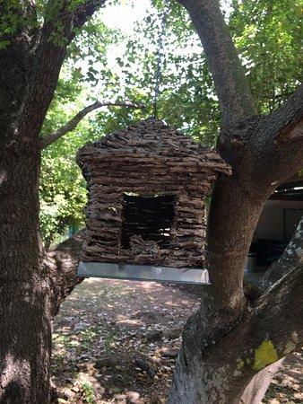 Bilpin, Australia: Bird home