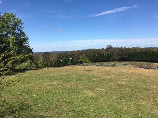 Bilpin, Australia: What a view