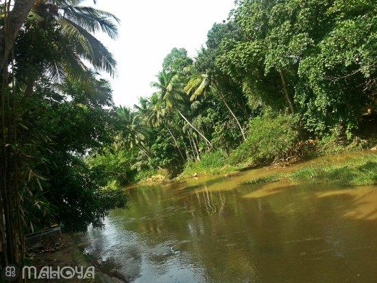 Mawanella, Sri Lanka: Maha Oya River.