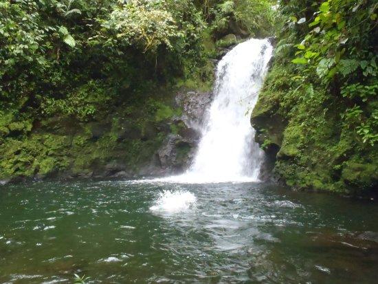 Guapiles, Κόστα Ρίκα: swimming hole #1