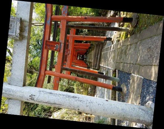 Suwa, Japón: 20171008_092941_large.jpg