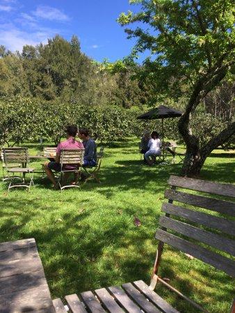 Tairua, Νέα Ζηλανδία: Garden setting