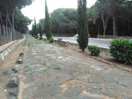 Via Romana Alla Pineta Della Campana