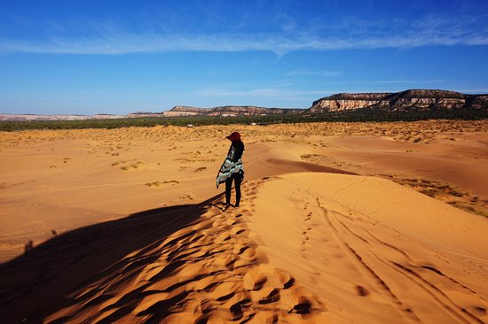 Coral Pink Sand Dunes State Park張圖片