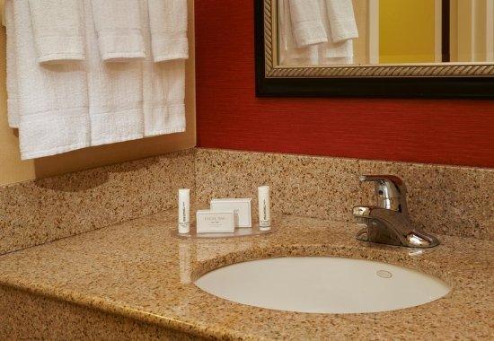 ทรอย, มิชิแกน: Guest Bathroom
