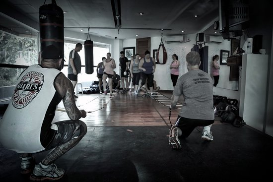 Siłownie / kluby fitness