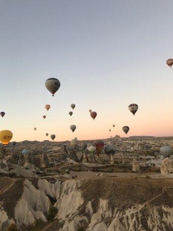 Royal Balloon: photo2.jpg