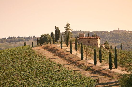 Chianti Culinary Tour from Florence...
