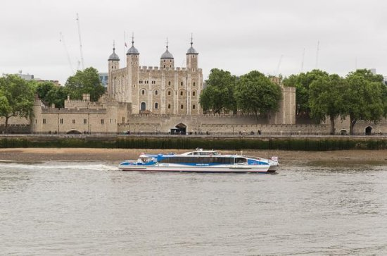 Thames Clippers River Roamer: Hop On...
