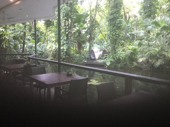 Daintree EcoLodge & Spa: photo2.jpg