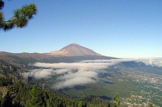Essential Tenerife