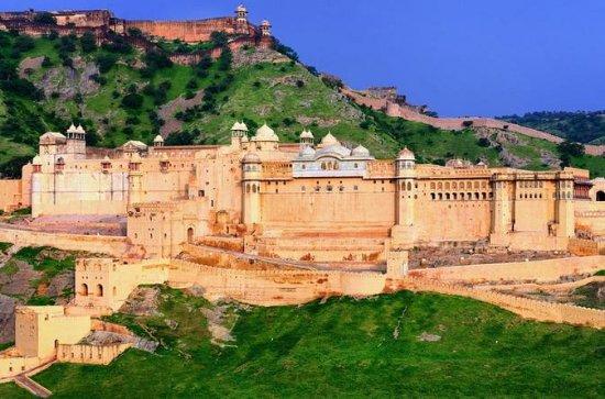 Jaipur Excursão privada no mesmo dia...