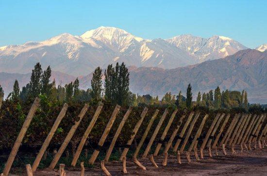 Private Wein Tour von Uco Valley von...