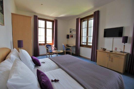 La Tour-de-Peilz, Swiss: Guest Room