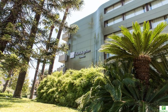 Holiday Inn Cannes : Nice and green atmosphere surrounding the hotel