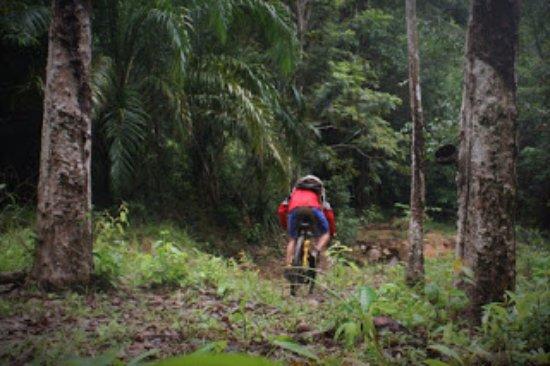 Nong Thale, Thailand: Downhill