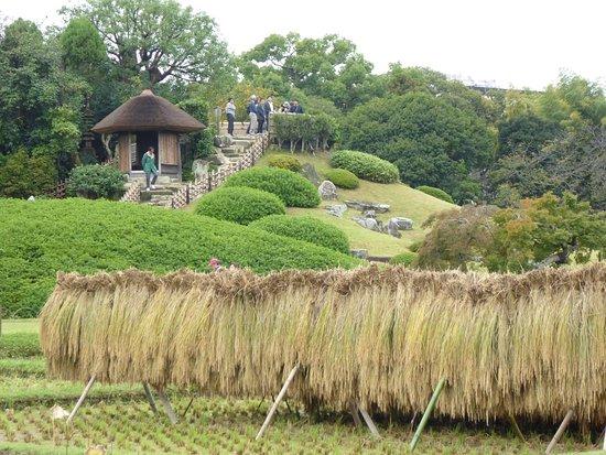 Korakuen Garden