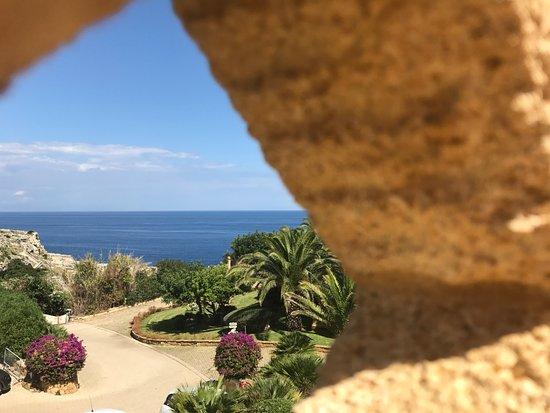 Hotel Villa Venus Tripadvisor
