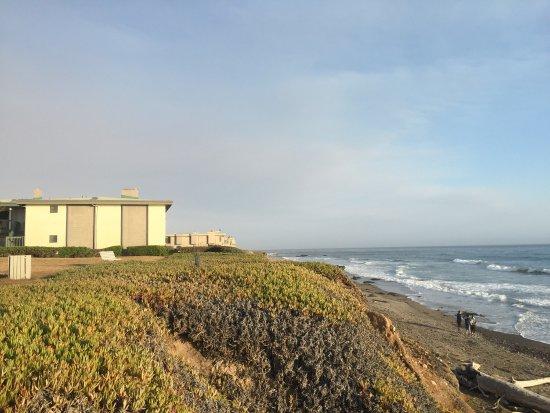 Cavalier Oceanfront Resort: photo3.jpg