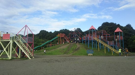 ‪Oyama Comprehensive Park‬