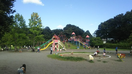 Oyama, Japan: DSC_0423_large.jpg