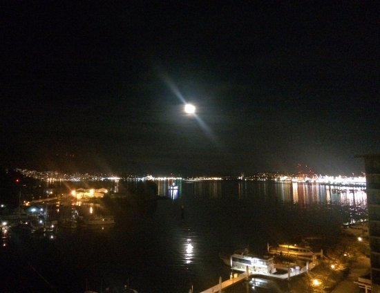 The Westin Bayshore, Vancouver: point of view from my room 1090 at night. it was moonlight.