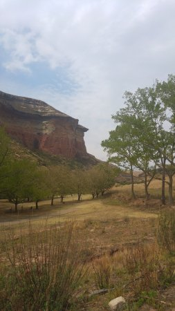 Golden Gate Highlands National Park: Mushroom Rock