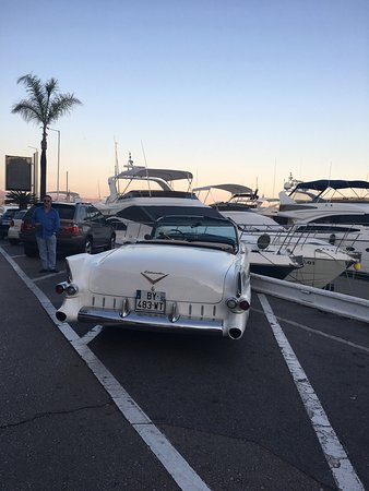 Puerto Banus Marina: photo7.jpg