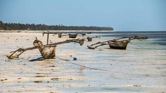 Sahari Zanzibar : beach view of a nearby place