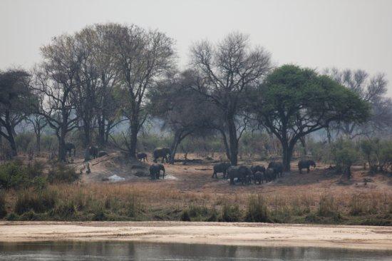 Caprivi Region, Namibya: Die Sicht über den Okawango