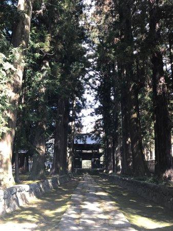 Shimosuwa-machi 사진