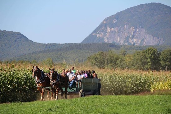 East Burke, VT: Burke Area Activities: Summertime Scenic Horse Drawn Wagon Rides