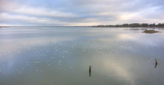 Plage Saint-Martin-de-Brehal: le havre de la Vanlée lors d'une grande marée