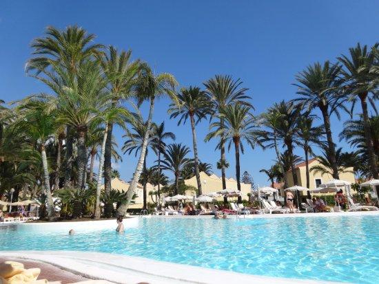 Hotel Riu Palmeras / Bung Riu Palmitos: Pool scene