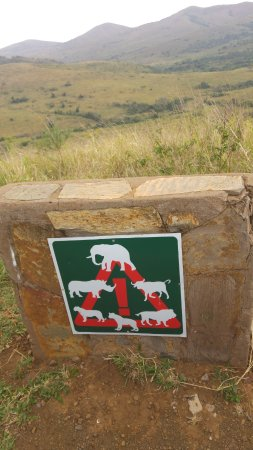 Zululand, South Africa: Beware...